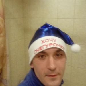 Антон, 35 лет, Зеленогорск