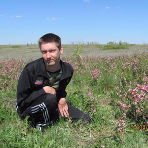 Павел, 36 лет, Волгоград