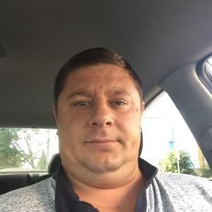 Павел, 36 лет, Белгород