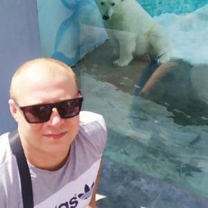 Александр Самойлов, 24 года, Гороховец