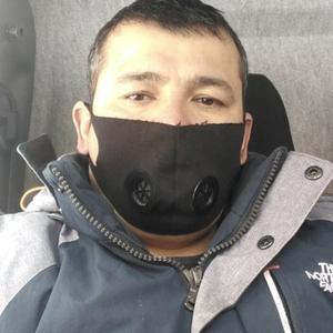 Elyarjan, 36 лет, Ногинск