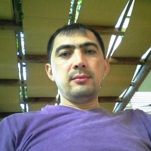 Бахтияр, 38 лет, Тейково