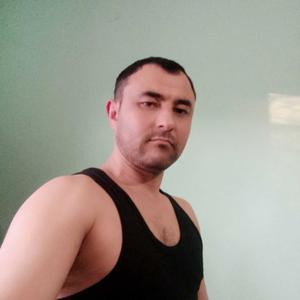 Фарход, 35 лет, Сосновый Бор