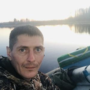 Вадим, 36 лет, Череповец