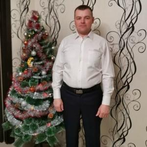 Ал, 39 лет, Вологда