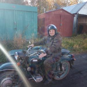 Игорь, 43 года, Архангельск