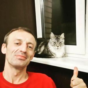 Зам, 45 лет, Краснознаменск