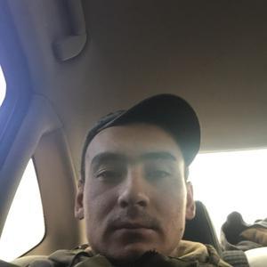 Миша, 26 лет, Новосибирск