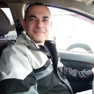 Андрей, 43 года, Тейково
