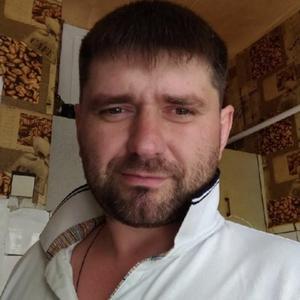 Алекс, 37 лет, Климовск