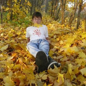 Павел, 28 лет, Ярославль
