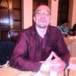 Дмитрий Свиридов, 44 года, Электросталь