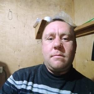 Сергей, 36 лет, Томск