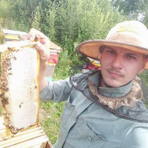 Александр, 26 лет, Черепаново