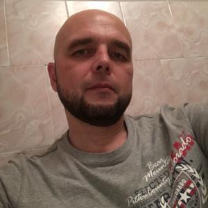 Сергей, 42 года, Шелехов