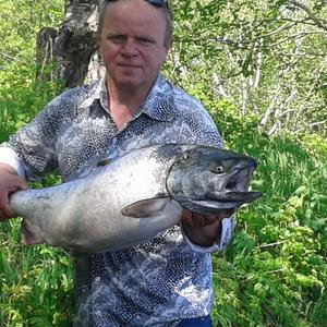 Юрий, 44 года, Елизово