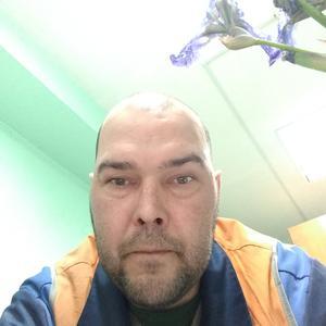 Александр, 44 года, Железногорск