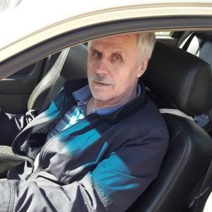 Евгений Ануфриев, 69 лет, Владимир