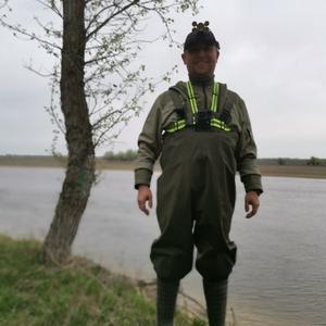 Mralex, 37 лет, Владимир