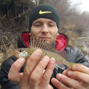 Роман, 37 лет, Нововоронеж
