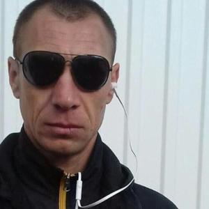 Дмитрий Вечкунин, 36 лет, Барыш