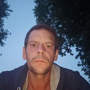 Николай, 37 лет, Липецк