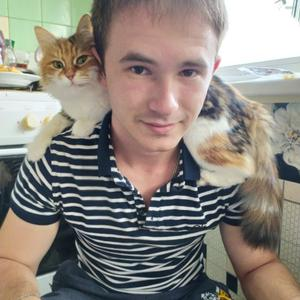 Dima, 30 лет, Алушта