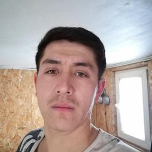 Ahliddin, 27 лет, Ачинск