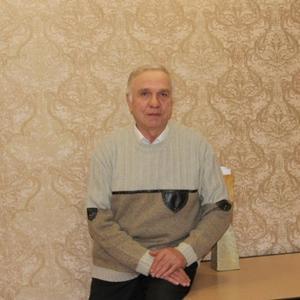 Анатолий Бурцев, 67 лет, Ижевск