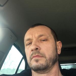 Сергей, 44 года, Домодедово