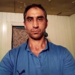 Алекс Сафарян, 42 года, Зерноград