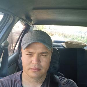 Волк, 35 лет, Рубцовск