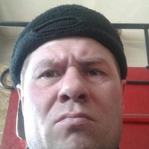 Владимир, 45 лет, Кыштым
