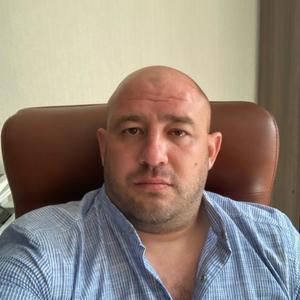 Андрей Новиков, 37 лет, Разумное