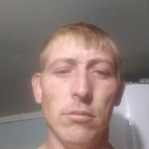 Роман Коржов, 33 года, Михайловка
