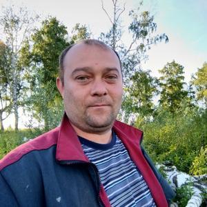 Жека Берников, 39 лет, Белово