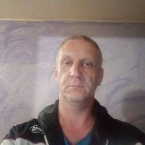 Александр, 44 года, Суздаль
