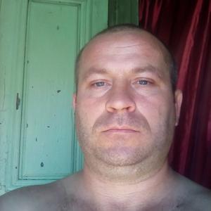 Коля, 35 лет, Георгиевск