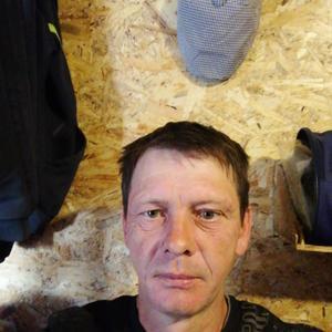 Алексей, 47 лет, Кострома