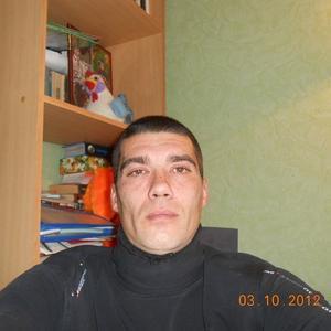 Владимир, 42 года, Михайловка