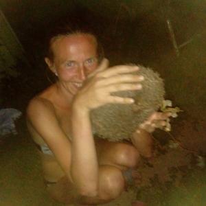 Татьяна, 38 лет, Новокуйбышевск