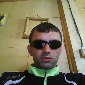 Дмитрий, 39 лет, Малая Вишера