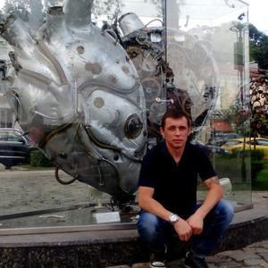 Николай, 35 лет, Череповец