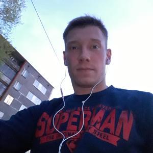 Серж, 34 года, Череповец