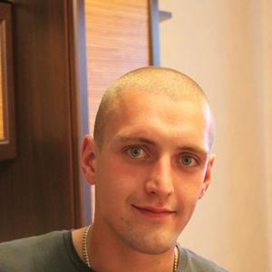 Владимир, 32 года, Выборг