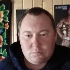 Малофеев, 38 лет, Егорьевск