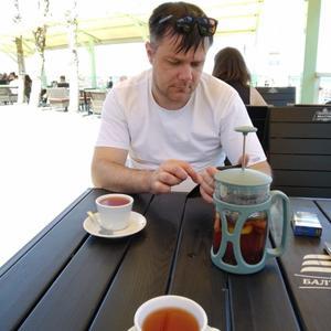 Сергей, 39 лет, Калининград