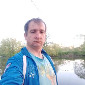 Сергей, 44 года, Коломна