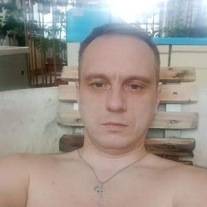 Александр, 41 год, Пушкин