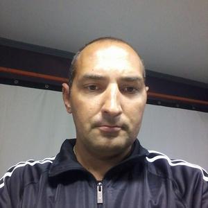 Сергей, 41 год, Славгород